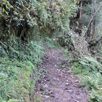 4km trek route from Lava to Rishyap