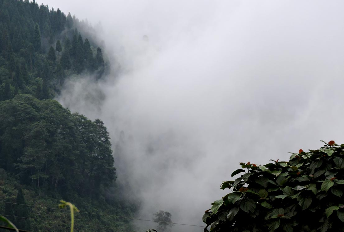 Clouds covering the echhey forest village