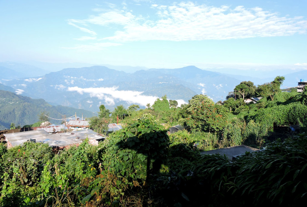 Magnificent morning homestay balcony