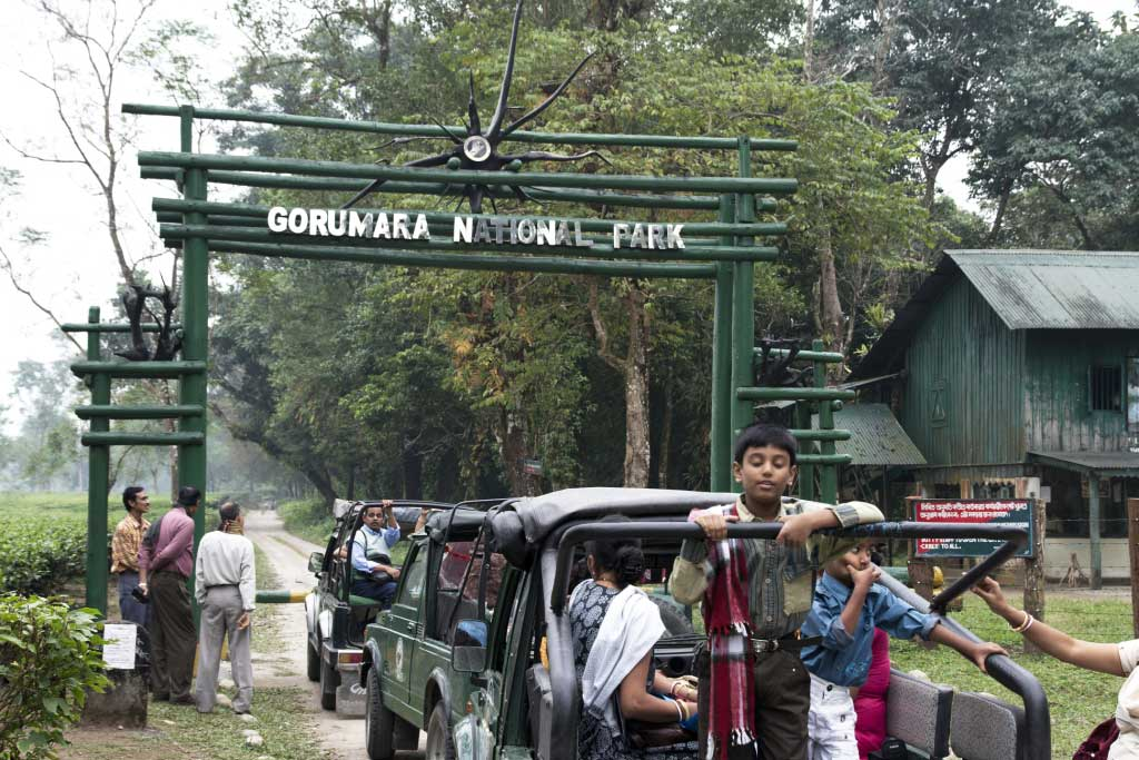 Gorumara-National-Park-Located-at-a-distance-of-52-kms-from-Jalpaiguri