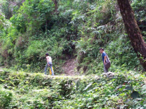 way to buxa fort through buxa tiger reserve forest