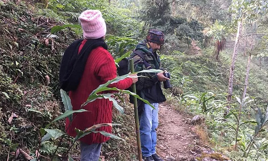 chisang-The-Wildwoods-Homestay-TREK-THROUGH-THE-CARDAMOM-FIELDS