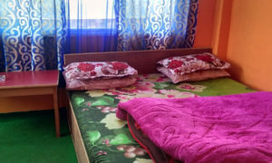 Salakha Home Stay at Lepchajagat room image with bed and bed side table