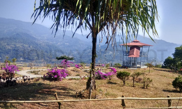 Samsing Trishna Homestay view point